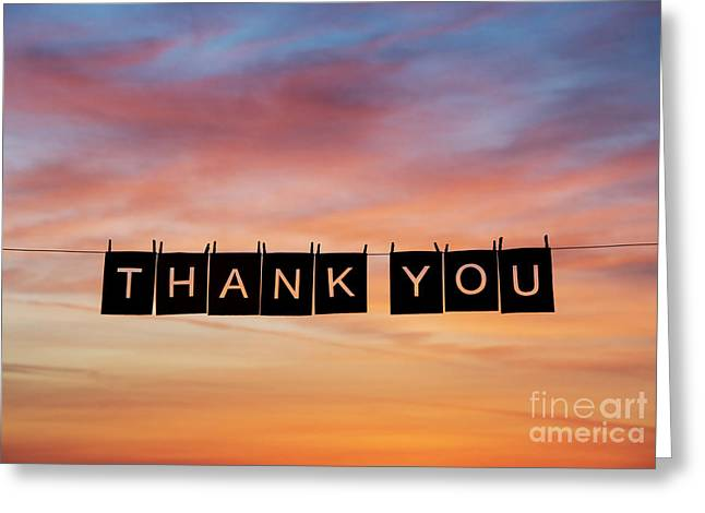Thank You Greeting Card by Tim Gainey