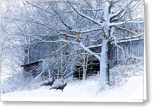 Thanksgiving Guests Greeting Card by Ron Jones