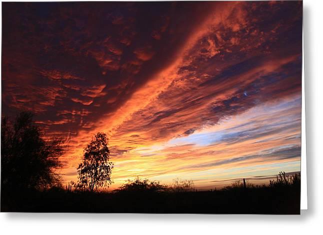 Thanksgiving Sunset Greeting Card by Gary Kaylor