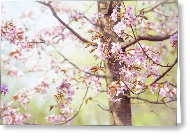 That Tender Joyful Spring Greeting Card by Jenny Rainbow