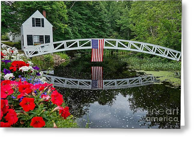 The 4th Of July Greeting Card by Susan Garver