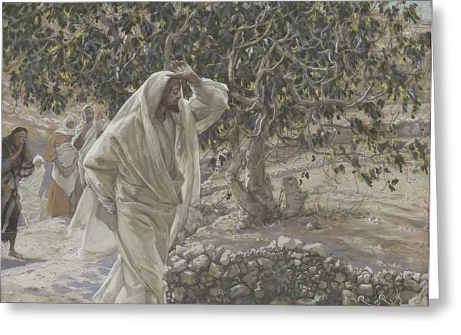 The Accursed Fig Tree Greeting Card by Tissot