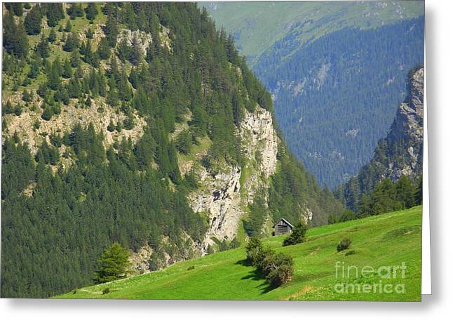 The Alps In Spring Greeting Card
