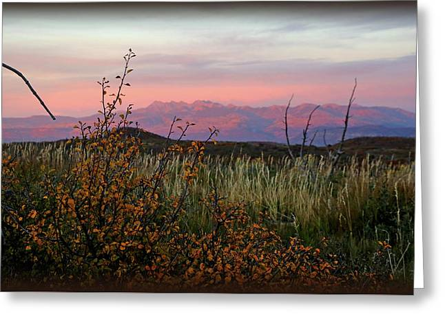 The American West With Vignette Greeting Card by David Ross