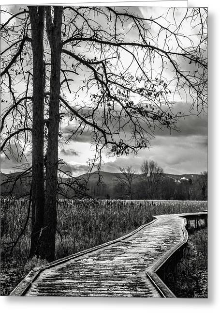 Greeting Card featuring the photograph The Appalachian Trail by Eduard Moldoveanu