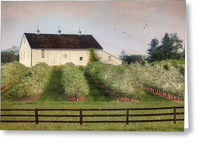 The Apple Orchard Greeting Card by Lori Deiter