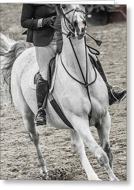 The Approach Show Jumping Greeting Card