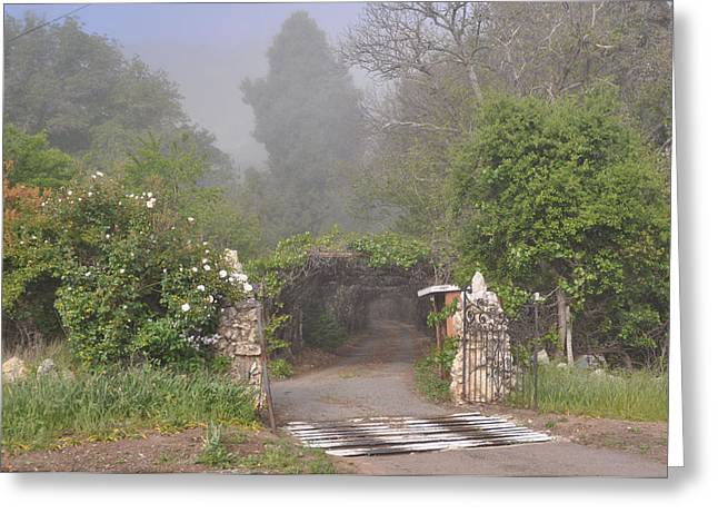 The Arbor In The Morning Greeting Card
