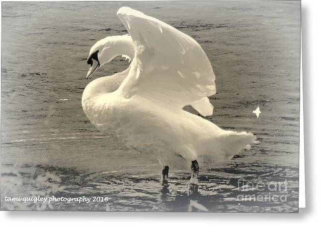 The Art Of The Swan  Greeting Card