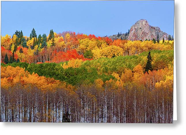 The Autumn Blanket Greeting Card