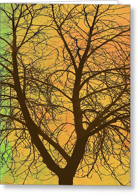 The Autumn Tree Triptych 2 Of 3 Greeting Card by Ken Figurski
