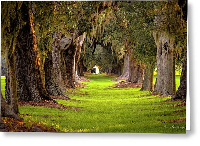 Greeting Card featuring the photograph The Avenue Of Oaks 4 St Simons Island Ga Art by Reid Callaway