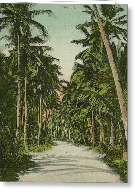 Greeting Card featuring the photograph The Avenue Of Palms Guam Li by eGuam Photo