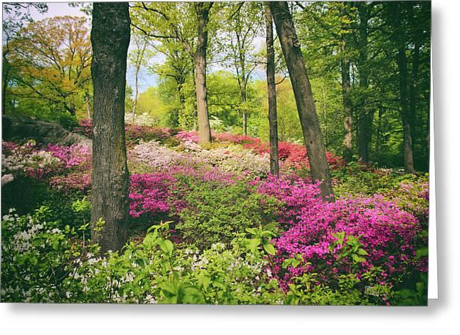 The Azalea Woodland Greeting Card by Jessica Jenney