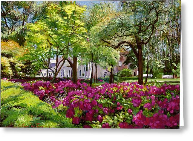 Best Selling Paintings Greeting Cards - The Azaleas of Savannah Greeting Card by David Lloyd Glover