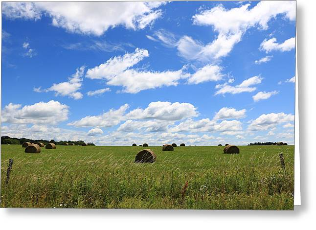 The Bales Of Summer 3 Greeting Card