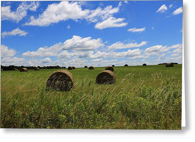 The Bales Of Summer Greeting Card