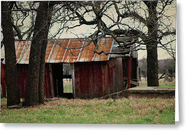 The Barn Out Back Greeting Card by Toni Hopper