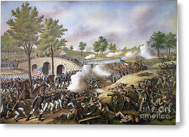 The Battle Of Antietam, Greeting Card