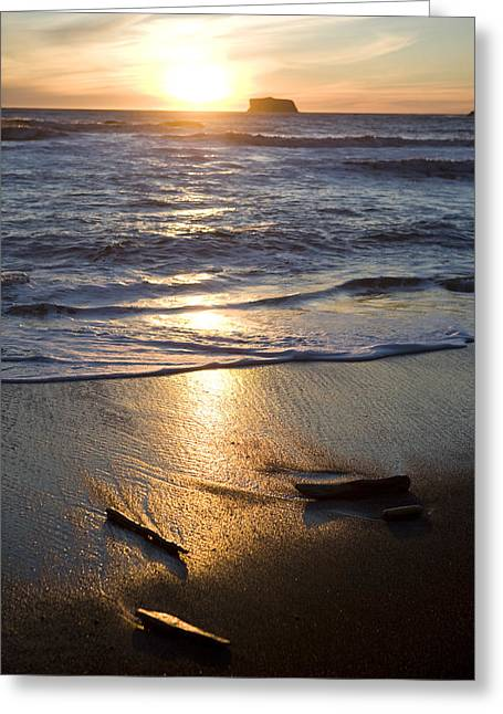 Surf Silhouette Greeting Cards - The Beach At Sunset In Olympic National Greeting Card by Taylor S. Kennedy