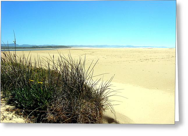 Greeting Card featuring the photograph The Beach by Riana Van Staden
