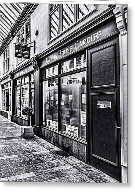 The Bear Shop Mono Greeting Card by Steve Purnell