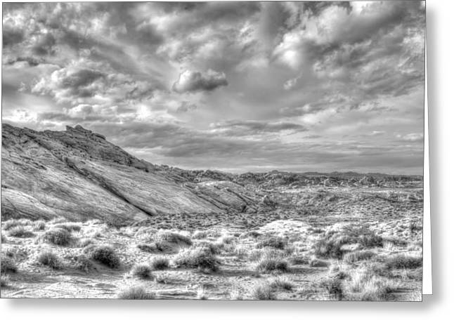 The Beautiful Valley Of Fire Greeting Card
