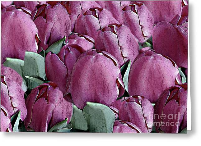 The Beauty And Depth Of A Bed Of Tulips Greeting Card