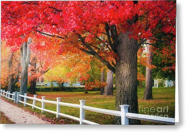 The Beauty Of Autumn In New England Greeting Card