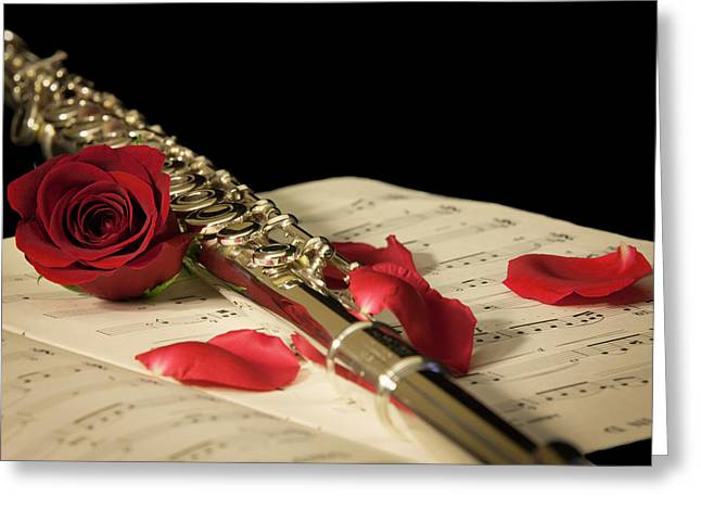 The Beauty Of Music Greeting Card