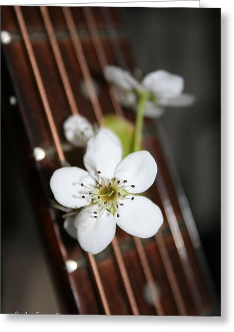 The Beauty Of Strings Greeting Card by Linda Sannuti