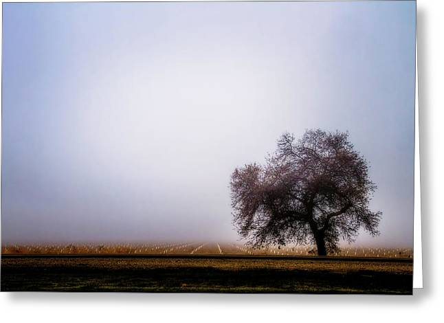 The Beauty Of The Land Greeting Card by Terry Davis