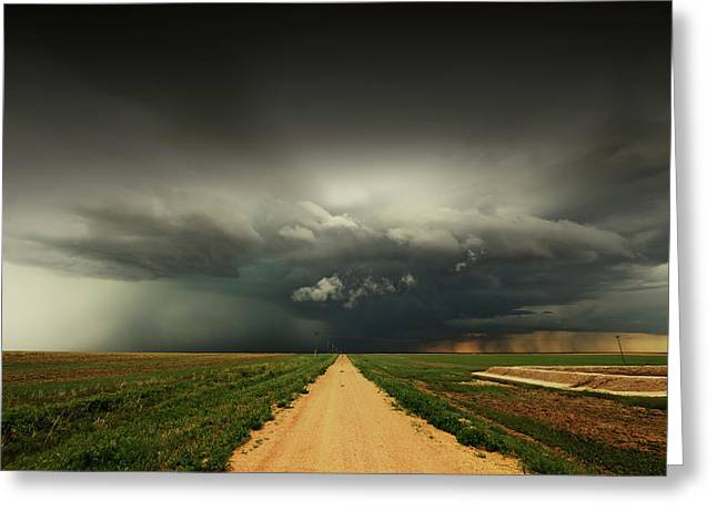 The Beauty Of The Plains Greeting Card by Brian Gustafson