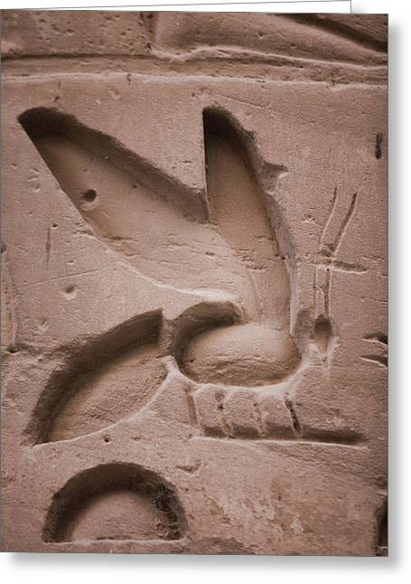 The Bee, A Symbol That Ramses IIs Name Greeting Card