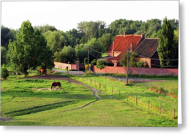 The Belgian Countryside Greeting Card by David L Griffin
