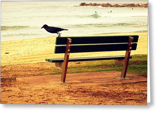 The Bench And The Blackbird Greeting Card