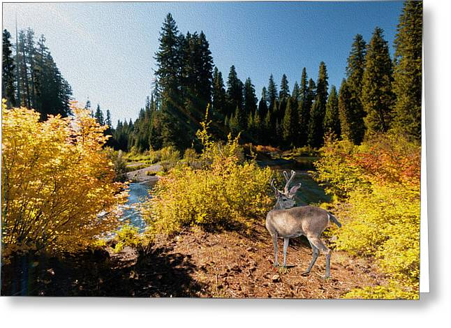 Greeting Card featuring the photograph The Bend Of The Rogue River by Diane Schuster