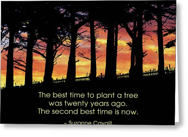 The Best Time To Plant A Tree Greeting Card