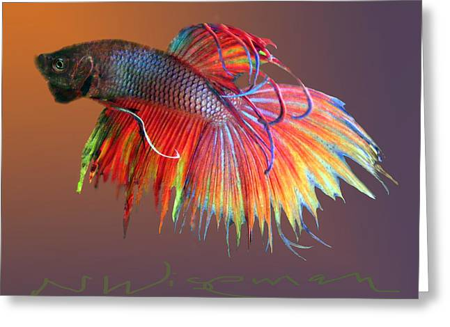 The Betta Greeting Card by Neal Wiseman