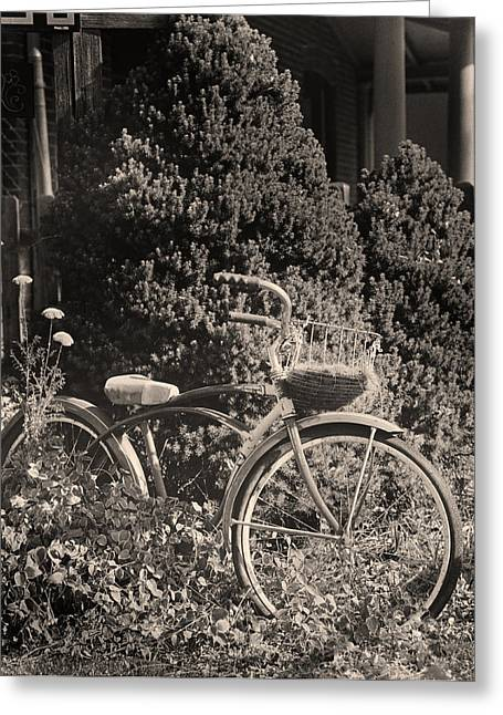 The Bicycle Garden II Greeting Card by Jim Furrer