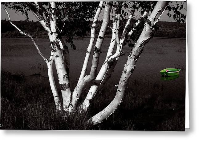 The Birch And The Green Dingy Greeting Card