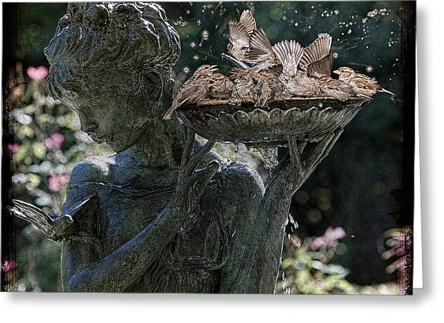 The Bird Bath Greeting Card by Chris Lord