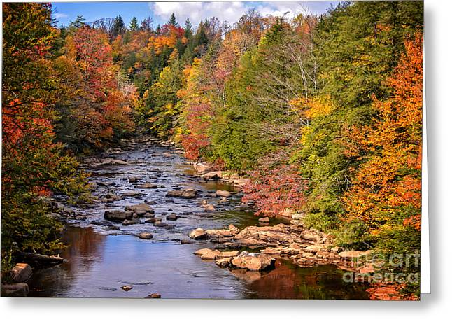 The Blackwater River In Autumn Color Greeting Card