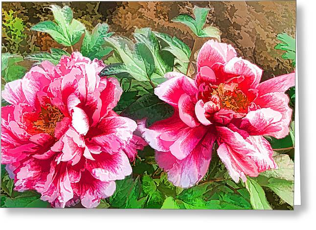 The Blossom Of Prosperity 1 Greeting Card