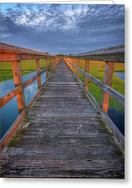 The Boardwalk In The Marsh Greeting Card by Rick Berk