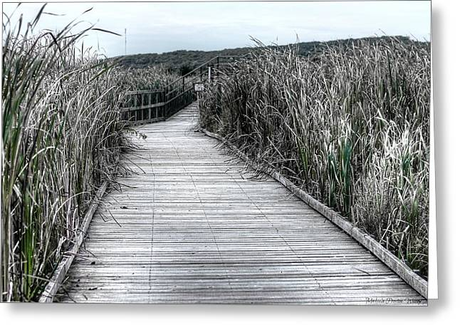 Greeting Card featuring the photograph The Boardwalk by Michaela Preston