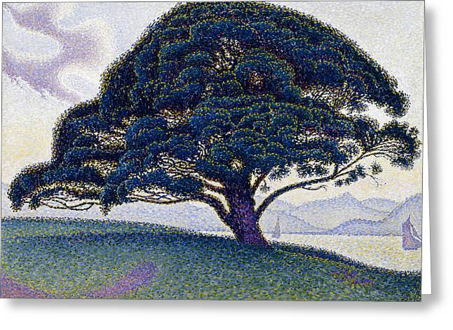 The Bonaventure Pine  Greeting Card by Paul Signac