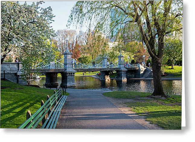 The Boston Public Garden In The Spring Boston Ma Greeting Card by Toby McGuire