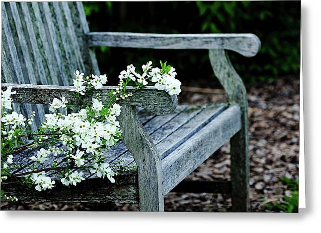 The Bride's Garden Bench Greeting Card by Debbie Oppermann