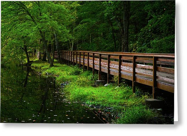 Greeting Card featuring the photograph The Bridge At Wolfe Park by Karol Livote